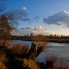 Golden Afternoon, Desborough Island by Rachael Talibart