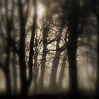 """"""" Woods In Freezing Fog """" by Richard Couchman"""