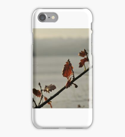 """"""" In Sparse Winters Light  """" iPhone Case/Skin"""