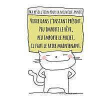 Ma résolution pour la prochaine année / Ohh la la French Doodle Photographic Print