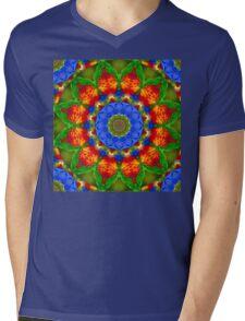 Feather Mandala 3 Mens V-Neck T-Shirt