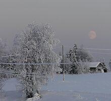 A wintery moon by Matti Eskelinen