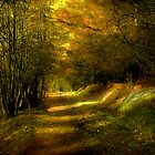 The Coppice Accrington. by Irene  Burdell