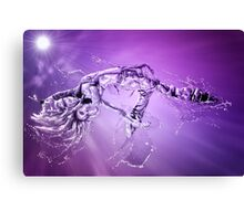 Flash Dance Canvas Print