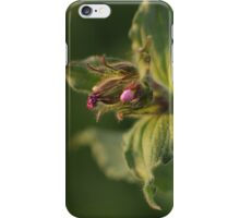 A flower of fur iPhone Case/Skin