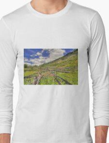 Mountain Meadow in Banff Long Sleeve T-Shirt