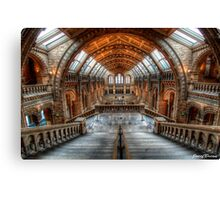 Natural History Museum Canvas Print