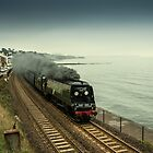 Tangmere at Dawlish  by Rob Hawkins