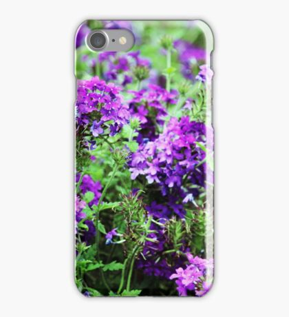 Purple Verbena iPhone Case/Skin