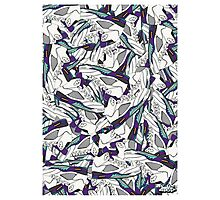 Air Jordan V Grape Pattern Photographic Print