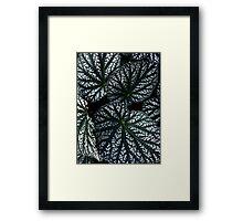 Plant Life Framed Print