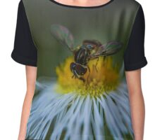 Tiny Bee Chiffon Top
