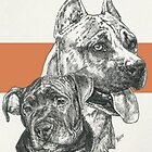 American Staffordshire Terrier, Father & Son by BarbBarcikKeith