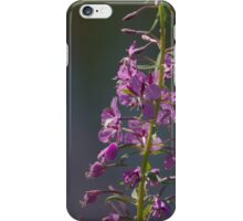 The bloom of a fireweed iPhone Case/Skin
