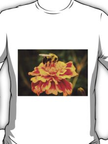 Autumn Marigold T-Shirt