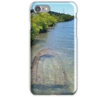 Sunken Boat, Puerto Rico iPhone Case/Skin