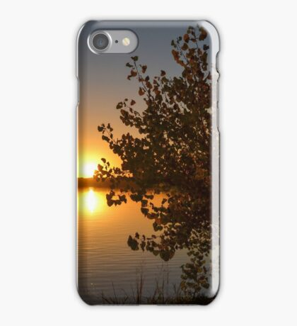 Fall Tree Sunset Reflection iPhone Case/Skin