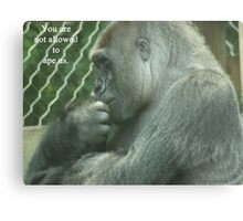You are not allowed to ape us. Metal Print