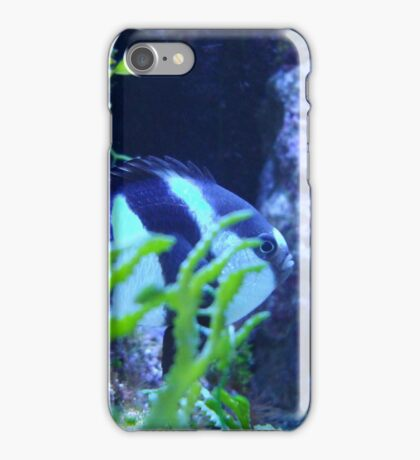 Striped Fish behind Plant iPhone Case/Skin