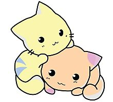 Two Kitties -  Cuteness overload (COLOR) Photographic Print