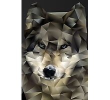 Abstract Wolf Photographic Print