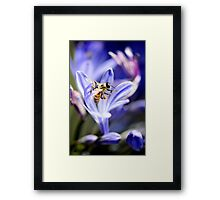 From Every Opening Flower Framed Print