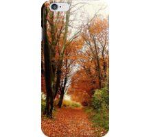 An Autumn Walk iPhone Case/Skin
