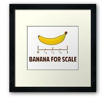 Banana For Scale Framed Print