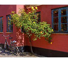 Bicycles of Aero 2 Photographic Print