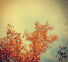 Yellow Birch Leaves by Olivia Joy StClaire