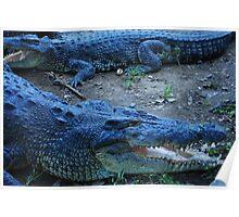 Crocs - Philippines Poster