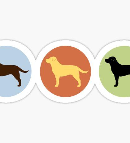 Labrador Retrievers: Chocolate, Yellow, Black Sticker