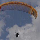 Orange Powerglider............ by lynn carter