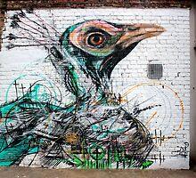 Peacock - Islington by rsangsterkelly
