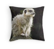 Meercat    So cute as tote  house trained Throw Pillow