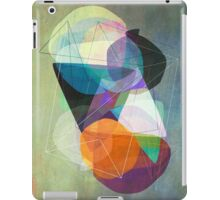 Graphic 117 Z iPad Case/Skin