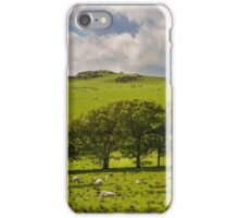 Sheep on a hillside in Wales iPhone Case/Skin