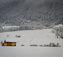 Barn on a snow covered German hillside by Quattrophoto