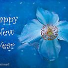 Happy New Year by Marilyn Cornwell