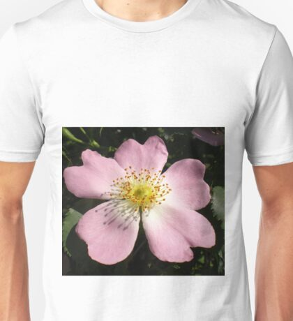 Flower of wild rose Unisex T-Shirt