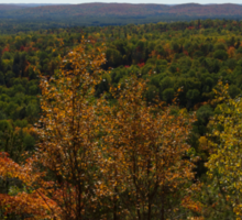 The Scenic Overlook - Algonquin in the Fall Sticker