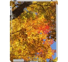 Vivid Yellows, Reds and Oranges - the Joy of Autumn Foliage iPad Case/Skin