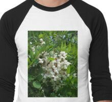 Robinia white tree inflorescence Men's Baseball ¾ T-Shirt