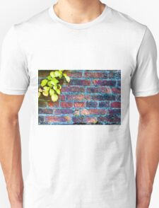 Autumn leaves against red brick wall, natural frame background T-Shirt