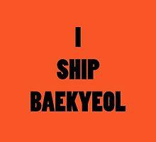 I ship BaekYeol by supalurve