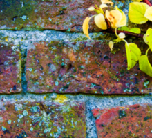 Autumn leaves against red brick wall, natural frame background Sticker
