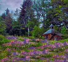 A Riot of Lupine Outside the Cabin  by Wayne King