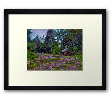 A Riot of Lupine Outside the Cabin  Framed Print