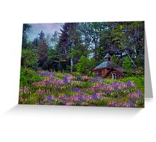 A Riot of Lupine Outside the Cabin  Greeting Card