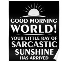 Little Ray of Sarcastic Sunshine Has Arrived Poster